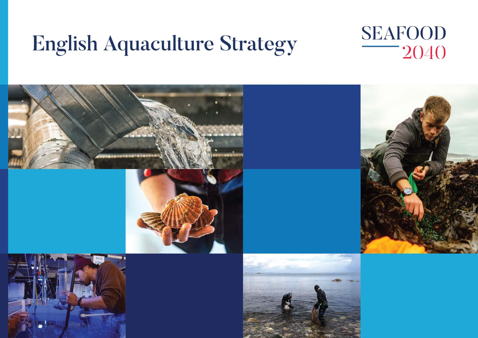 Cover of the English Aquaculture Strategy report by Seafood 2040