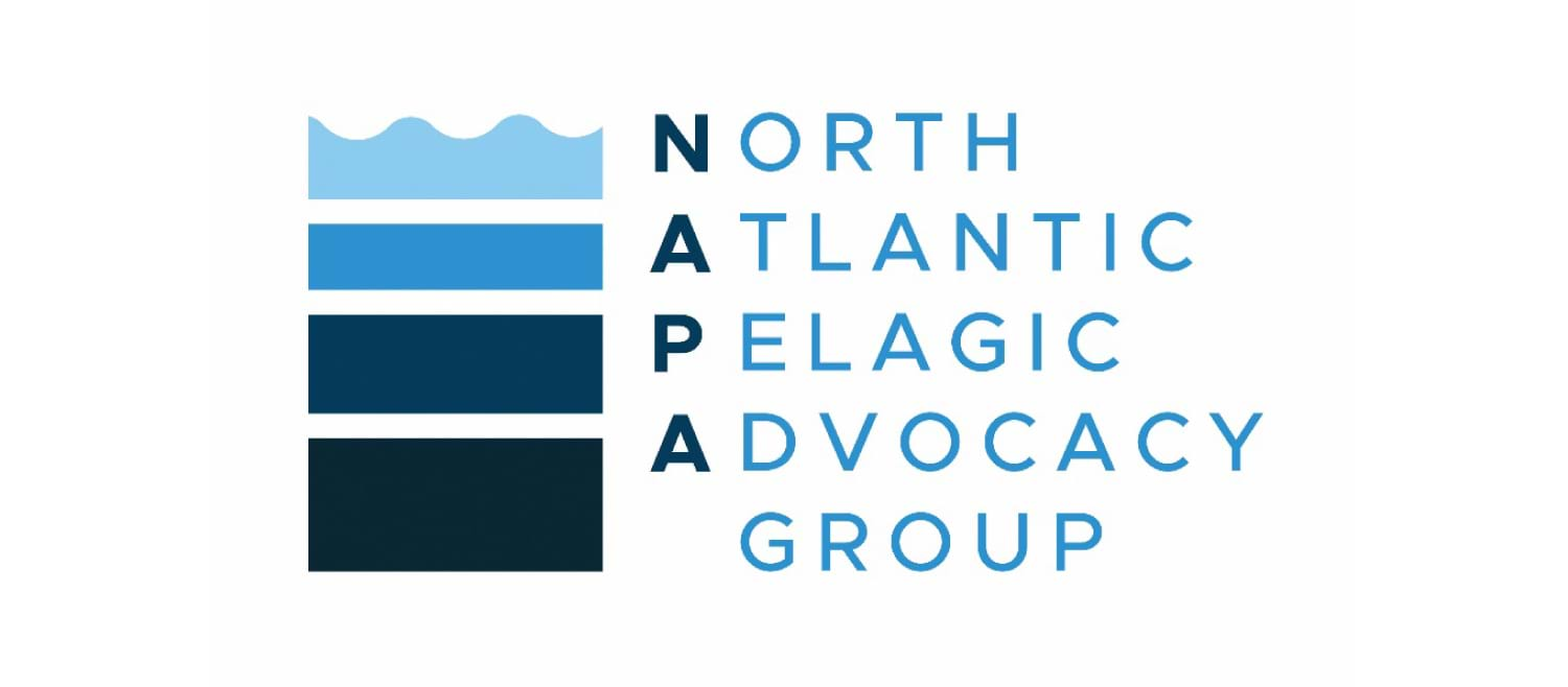 North Atlantic Pelagic Advocacy Group logo - text positioned to side of stacked blue boxes, highest box has wavy line along top