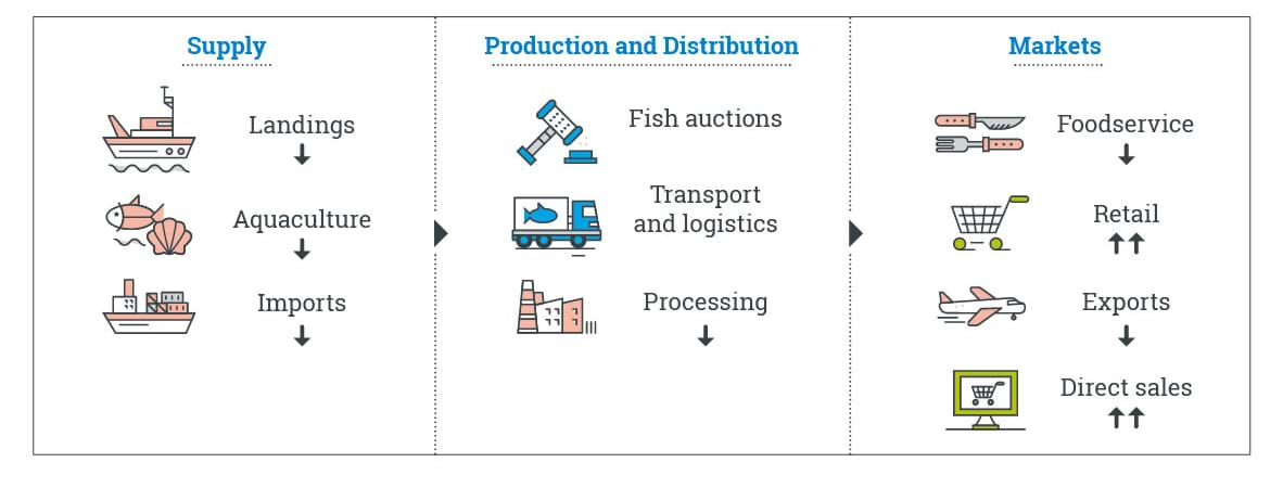 Diagram with coloured icons to show impacts across supply, production and distribution and markets sectors as restrictions ease (listed below)